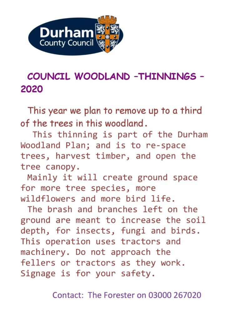 Council Woodland Thinnings notice 2