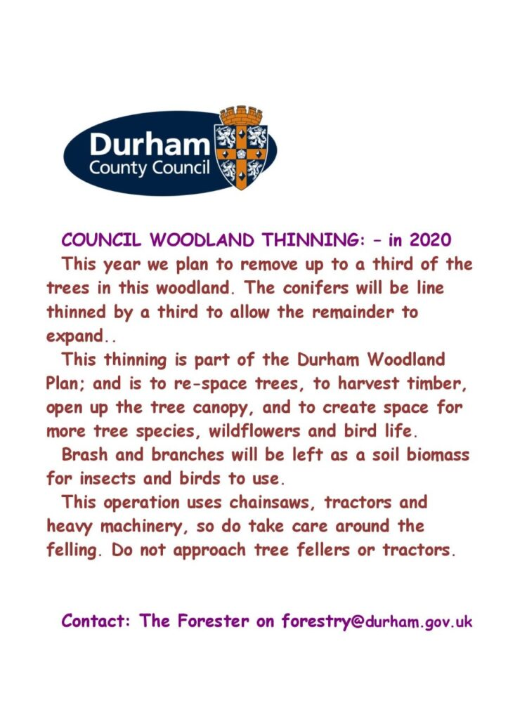Council Woodland Thinnings notice